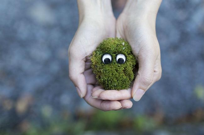 5 Magic Words That Will Open Hidden Doors For You